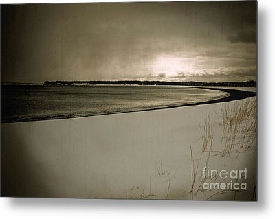 Metal Print featuring the photograph Winter Solitude by Alana Ranney