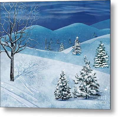 Winter Solstice Metal Print by Bedros Awak