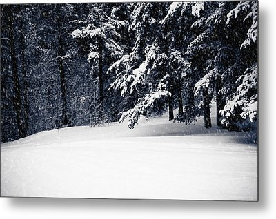 Winter Storm Metal Print by Maggie Terlecki