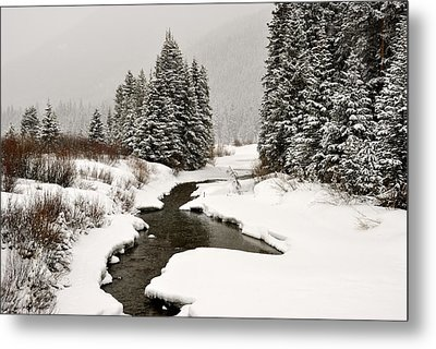 Winter Stream Metal Print by Frank Remar