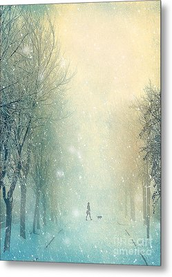 Winter Stroll Metal Print by Svetlana Sewell