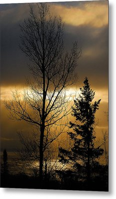 Winter Sunrise 2 Metal Print by Sebastian Musial