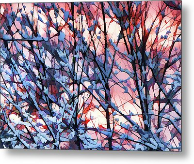 Winter Sunrise Metal Print by Betsy Zimmerli