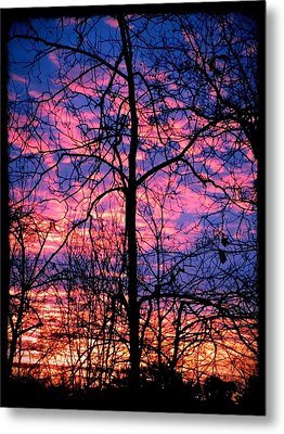 Winter Sunrise Metal Print by Betty Buller Whitehead