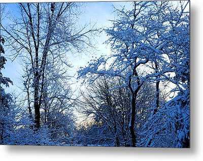 Winter Sunrise II Metal Print