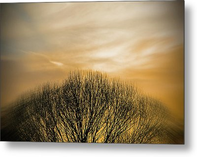 Winter Sunset Metal Print by Charles Ables