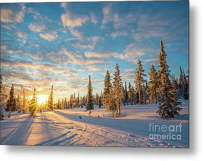 Metal Print featuring the photograph Winter Sunset by Delphimages Photo Creations