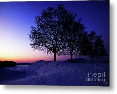 Winter Sunset Metal Print by Hannes Cmarits