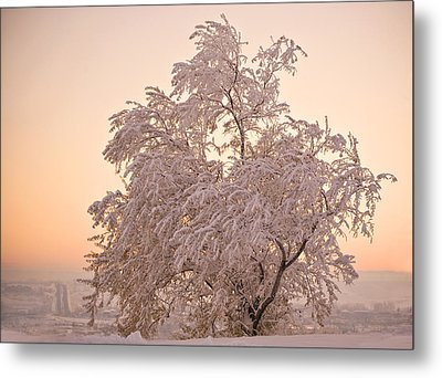 Winter Sunset Metal Print by Marilyn Hunt