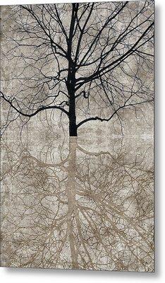 Winter Tree Metal Print by Carol Leigh