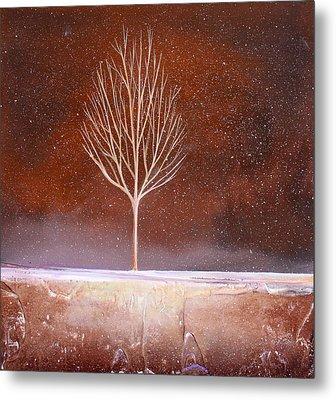 Winter Tree Metal Print by Toni Grote