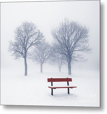 Winter Trees And Bench In Fog Metal Print by Elena Elisseeva