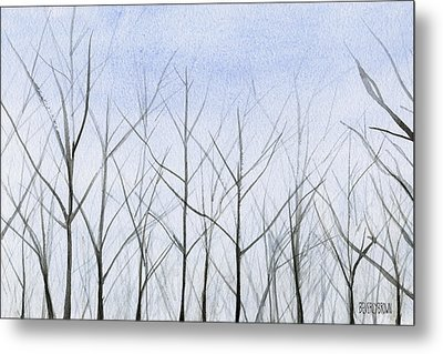 Winter Trees Metal Print by Beverly Brown