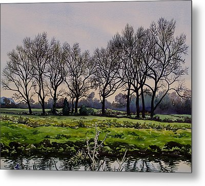 Winter Trees  Metal Print by Christopher Ryland