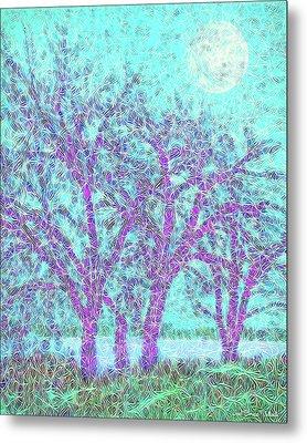 Metal Print featuring the digital art Winter Trees In Moonlight Blue - Boulder County Colorado by Joel Bruce Wallach