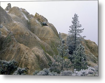 Winter Wind Metal Print
