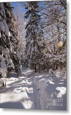 Winter Wonderland 2 Metal Print by Rudi Prott