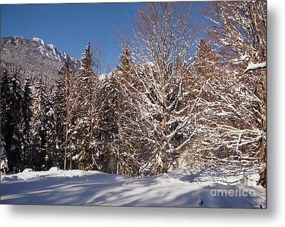 Winter Wonderland 3 Metal Print by Rudi Prott