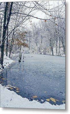 Winter Wonderland 3 Metal Print by SharaLee Art