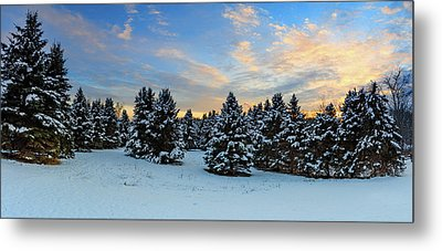 Metal Print featuring the photograph Winter Wonderland  by Emmanuel Panagiotakis