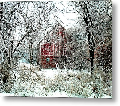 Winter Wonderland Metal Print by Julie Hamilton