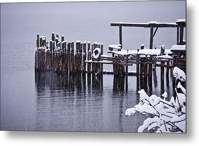 Winterized Metal Print by Albert Seger