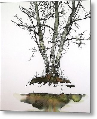 Winters Birch Metal Print by Carolyn Doe
