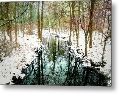 Winter's Chill Metal Print by Diana Angstadt