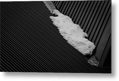 Metal Print featuring the photograph Winters End by Tim Nichols