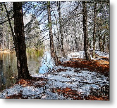 Winter's Remains Metal Print by Betsy Zimmerli