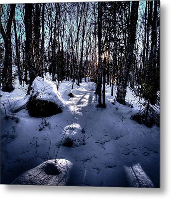 Metal Print featuring the photograph Winters Shadows by David Patterson