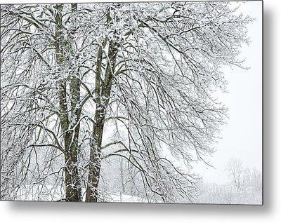 Wintertime In West Virginia Metal Print by Thomas R Fletcher
