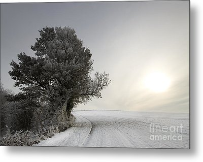 Wintery Landscape Metal Print by Angel  Tarantella