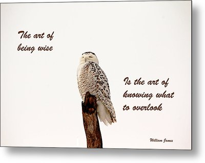 Wisdom Metal Print by Debbie Oppermann