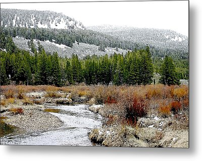 Wise River Montana Metal Print