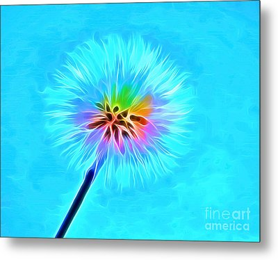 Wish From The Soul Metal Print