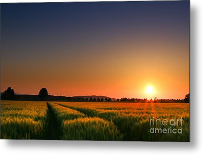 Metal Print featuring the photograph Wish You Were Here by Franziskus Pfleghart