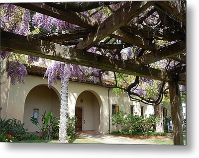 Wisteria Arbor Metal Print by Carolyn Donnell
