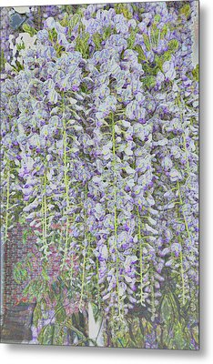 Metal Print featuring the photograph Wisteria Before The Hail by Nareeta Martin