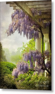 Wisteria In A Spring Shower Two Metal Print by Susan Isakson
