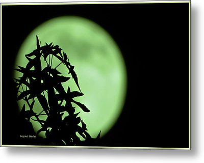 Metal Print featuring the photograph Witching Hour by DigiArt Diaries by Vicky B Fuller