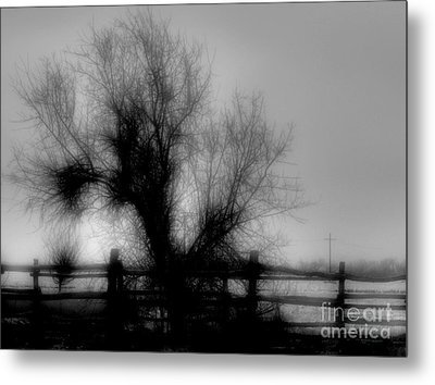 Witching Tree Metal Print