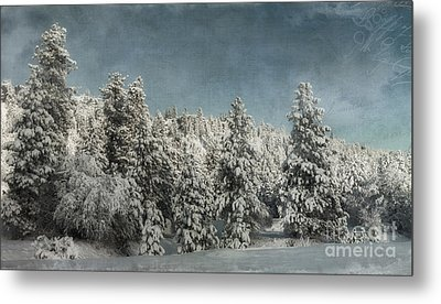 With Love - Winter  Metal Print by Beve Brown-Clark Photography
