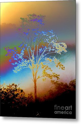 Metal Print featuring the photograph Witness Tree by Jesse Ciazza