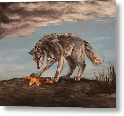 Wolf And Sea Star Metal Print