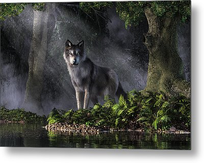 Wolf In The Forest Metal Print