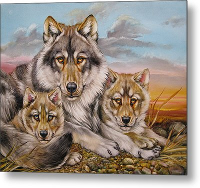 Wolf Nap Metal Print