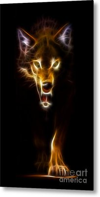 Wolf Ready To Attack Metal Print by Pamela Johnson