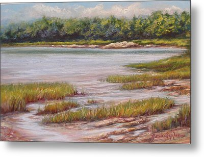 Wolfe's Neck State Park Metal Print