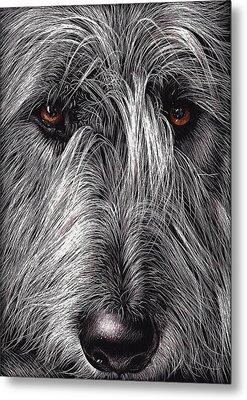 Wolfhound Metal Print